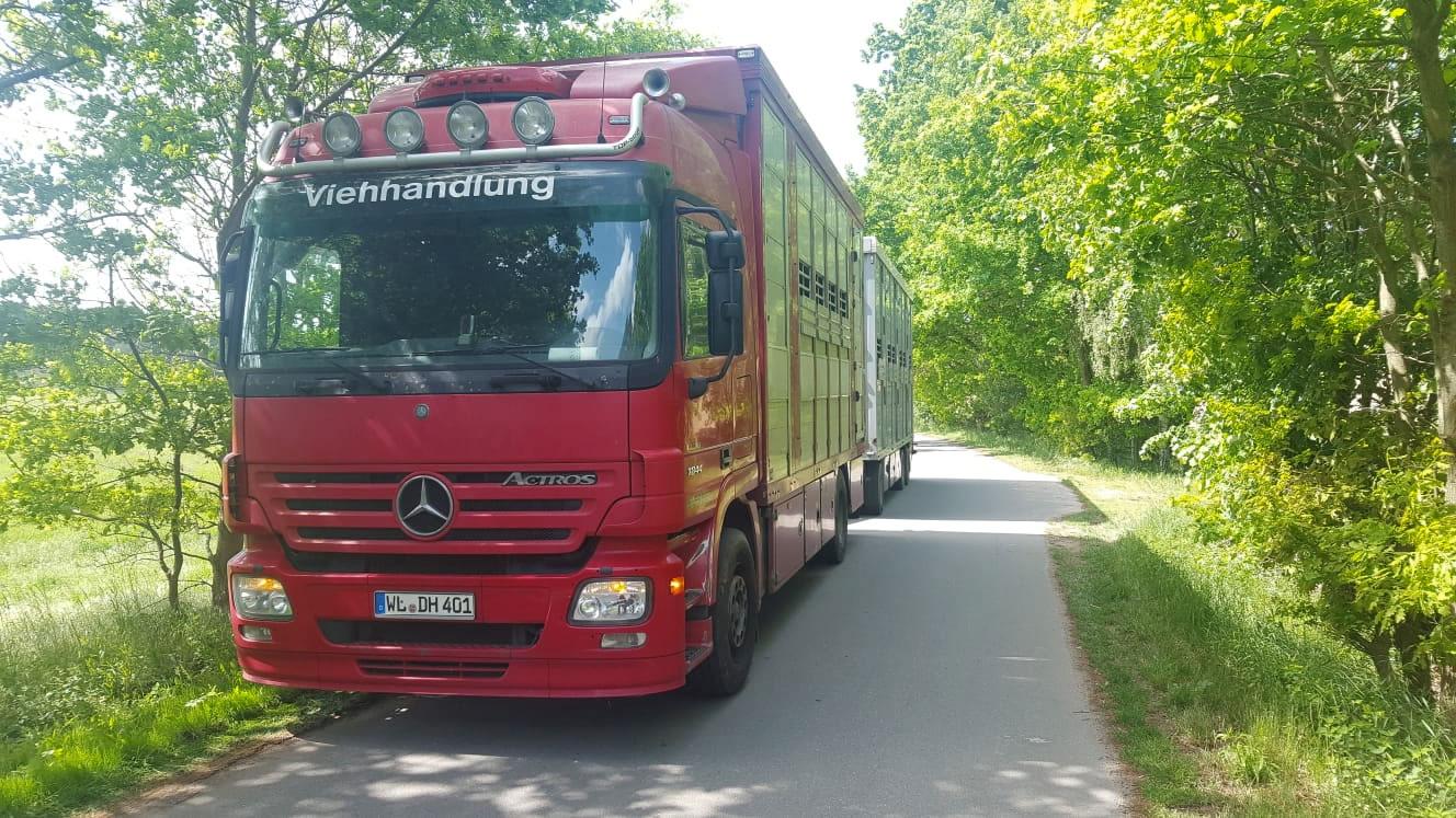 LKW-Mercedes-DH401