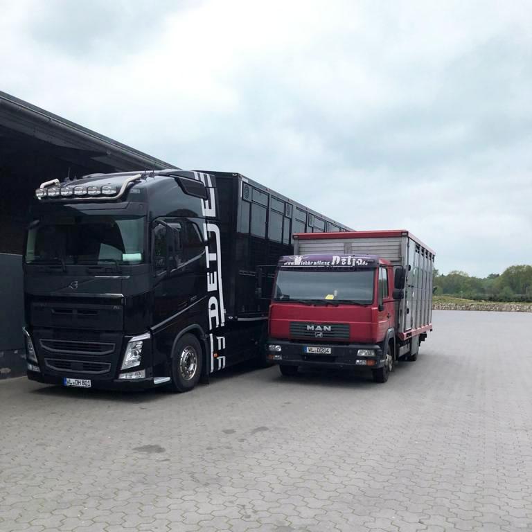LKW-Volvo-MAN-Halle