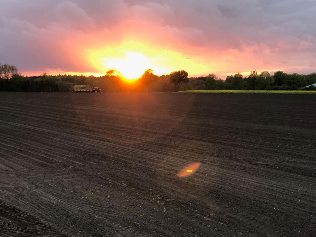 Rundballen-Trecker-Sonnenuntergang