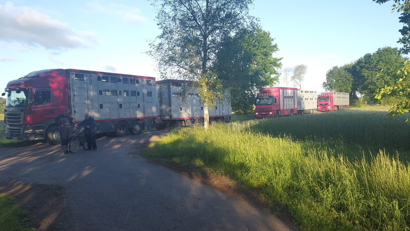 LKWs-rot-drei